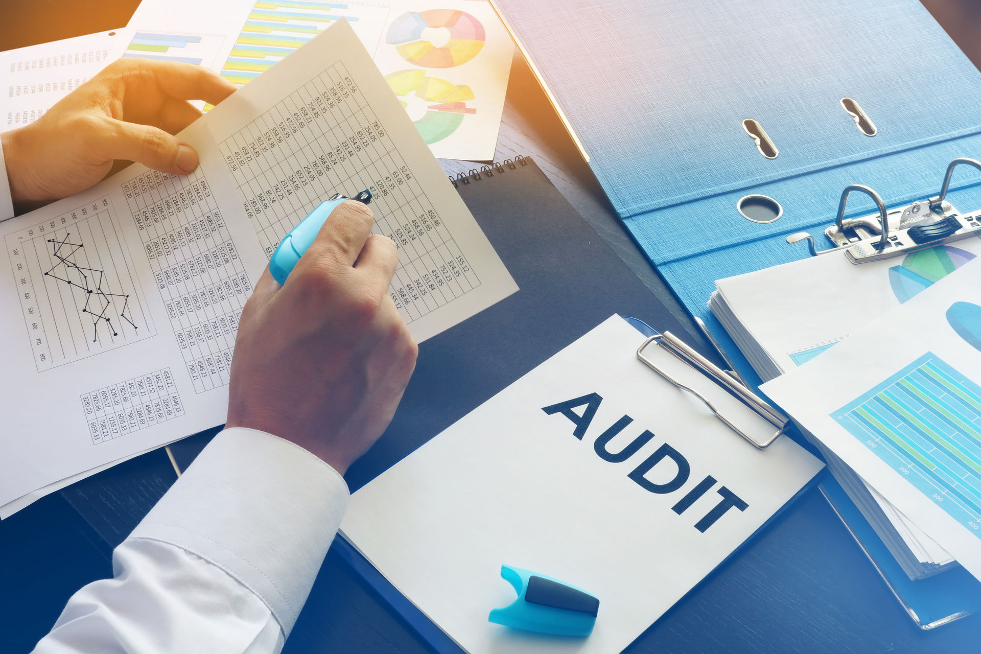 Audit Insurance: Why Do I Need It?